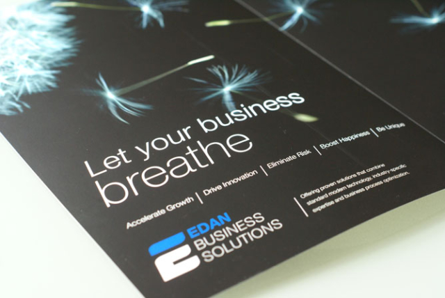 huisstijl logo Edan Business software © BizBis